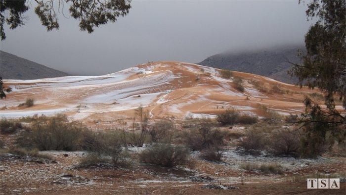 В крупнейшей пустыне Сахара выпал снег