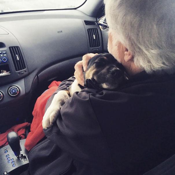 «Папа был не в восторге от того, что мы завели собаку. Хуже всего, что щенок влюбился в него».