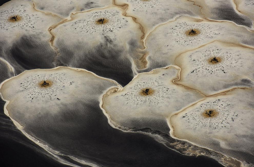 11. На оленях по тундре. (Фото Smithsonian.com):