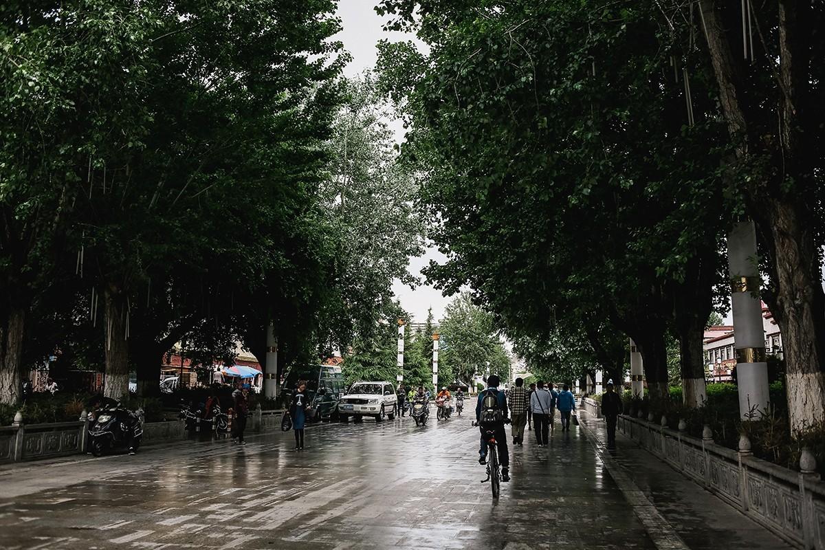 37. Однако нас ждала еще прогулка по современным районам города и экскурсия по Потале.
