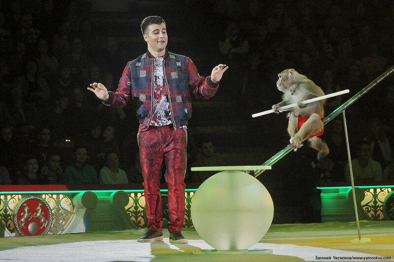 Цирк Никулина. Магия цирка. 21.02.17.17. Джабраилов..jpg