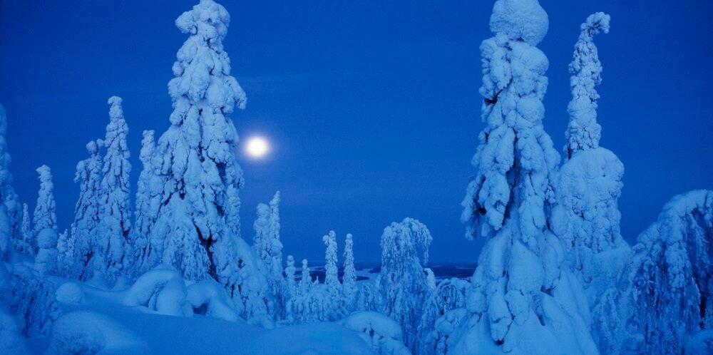 polarnight_44.jpg