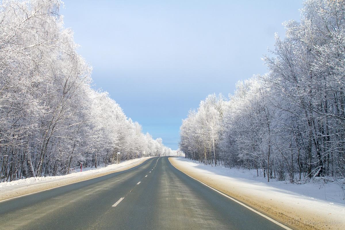дорога национальный парк хвалынский фото 4