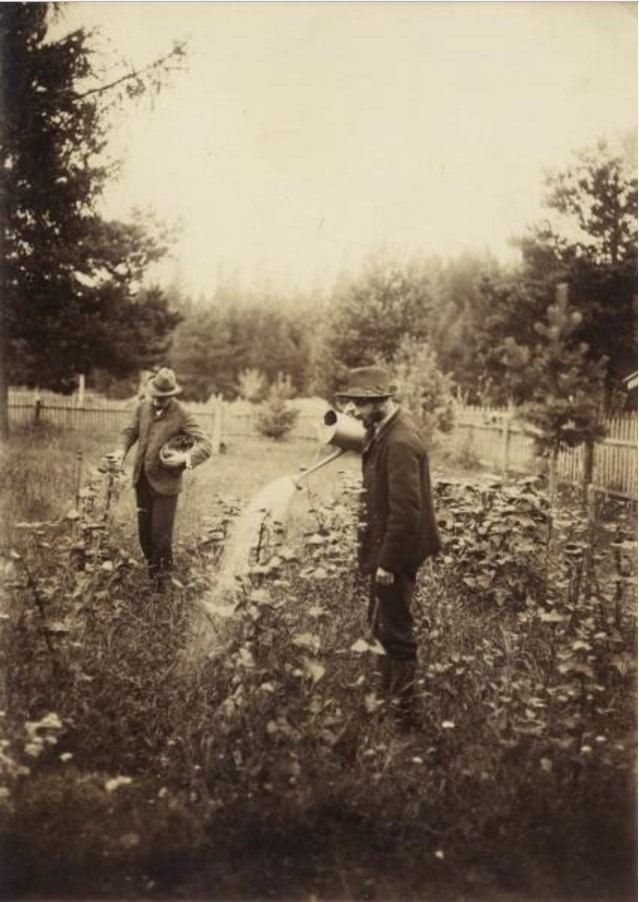 Поливка растений. 1907