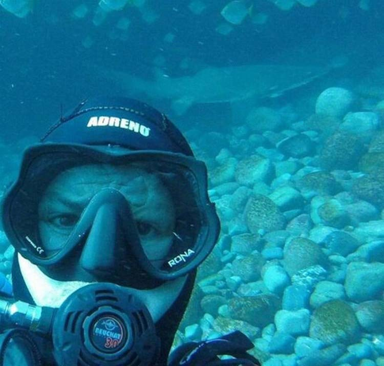 В течении 7 лет акула приплывает, чтобы пообниматься с дайвером
