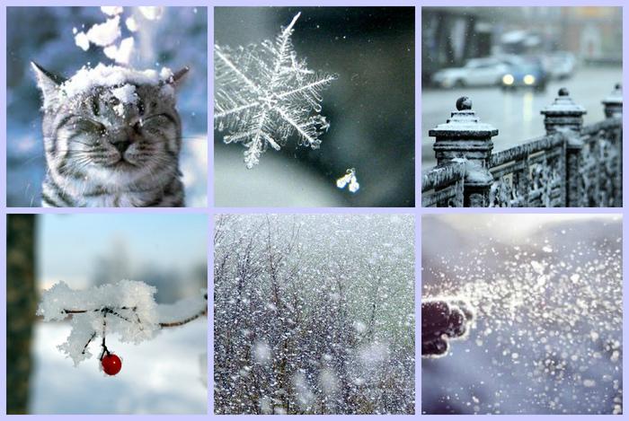 первый снег-6.jpg