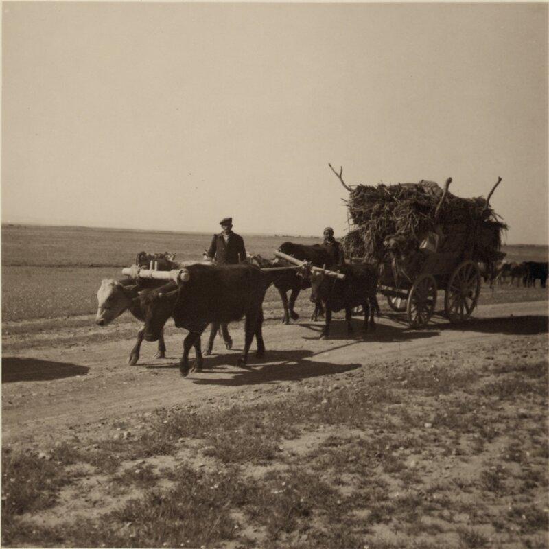 День Ассирийского мученика (Юма д-Саhда Атурая). История памятного дня.