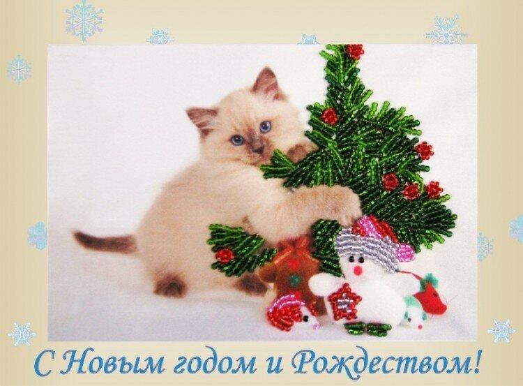 поздравления с новым годом кота и кролика