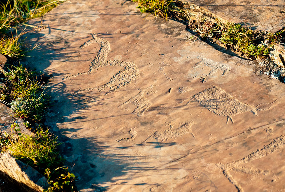 11. Чуйский тракт раньше назывался Мунгальским, самым древним упоминаниям о нем около 1 тыс. ле