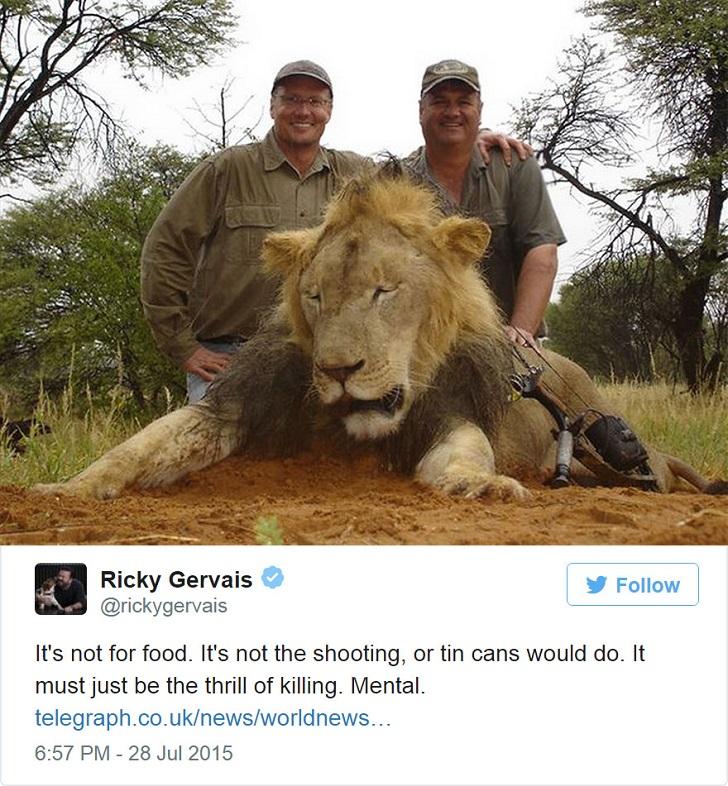Американец, убивший известного льва, вызвал ярость в интернете и закрыл свой стоматологический кабинет