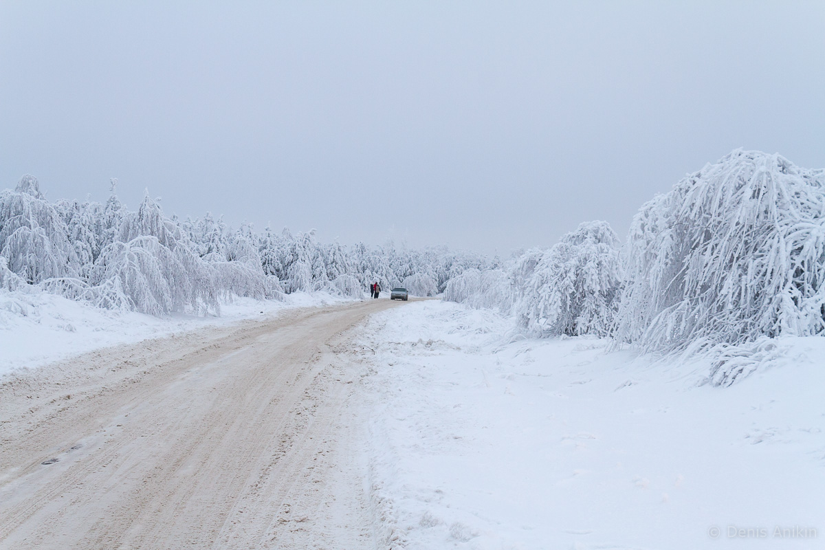 зима иней кумысная поляна саратов фото 10