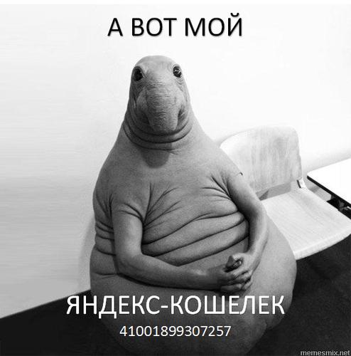 Waiter for money