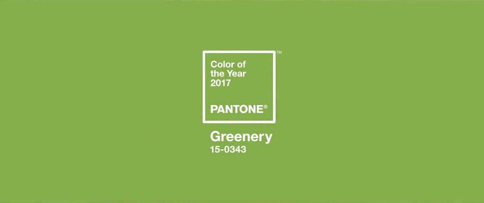 Pantone Color 2017.JPG