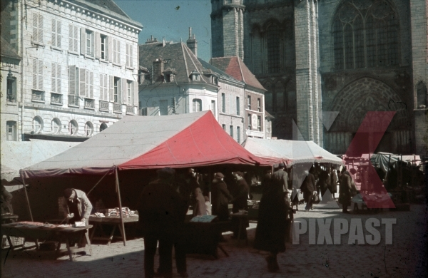 stock-photo-food-and-flea-market-behind-notre-dame-cathedral-paris-france-1940-11801.jpg