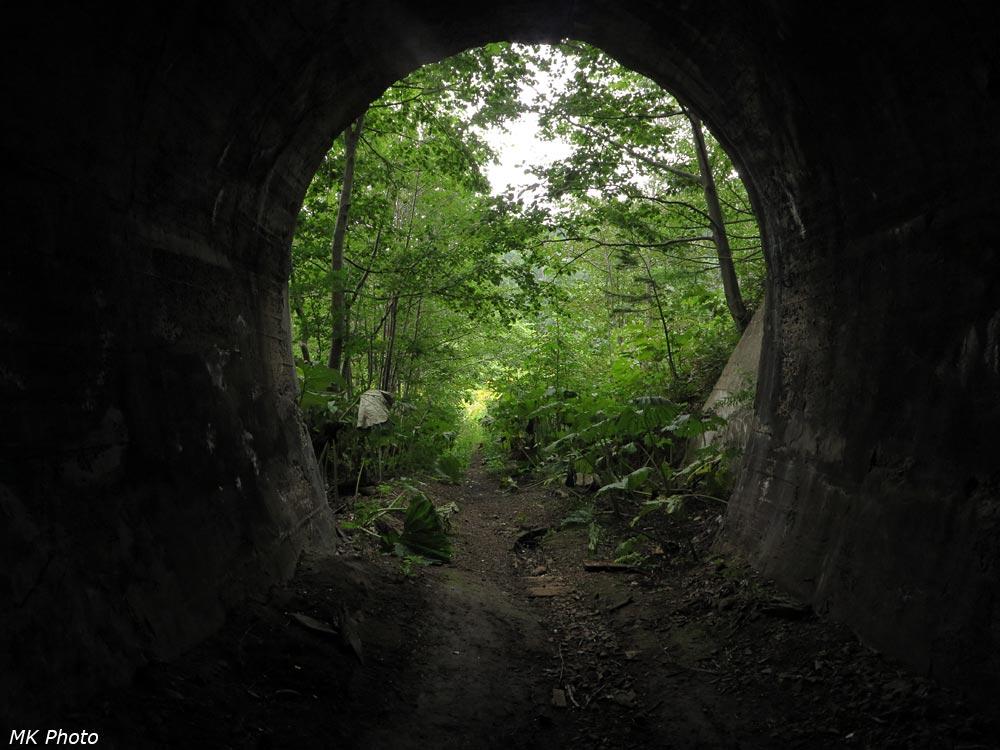 Вид из тоннеля 14