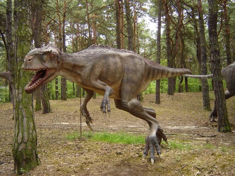 Ученые отыскали вмузее Франции останки крупнейшего динозавра Европы