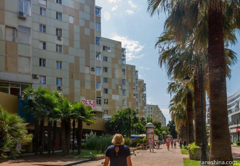 Навагинская улица, Сочи