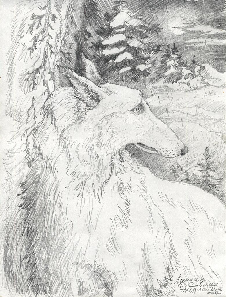 лунная-собака-ноябрь.jpg