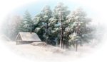 Winter Backgrounds #1 (129).png