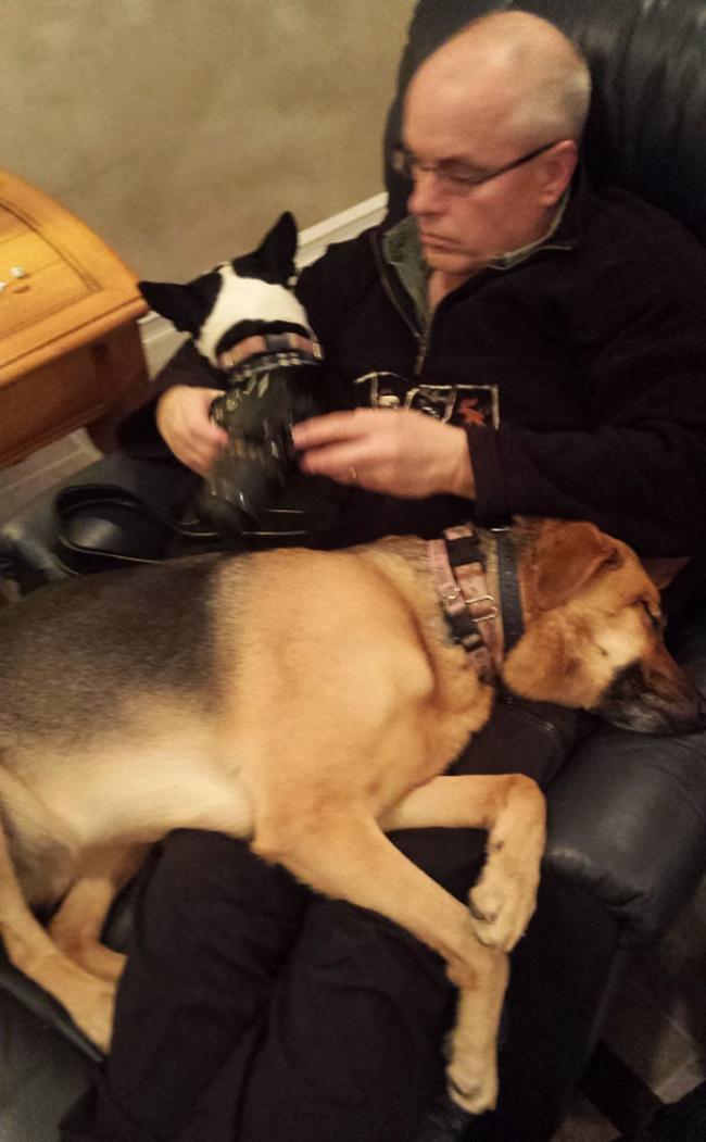 © GoodShark  «Ненужна мне собака! Япротив!» Да, пап, верю
