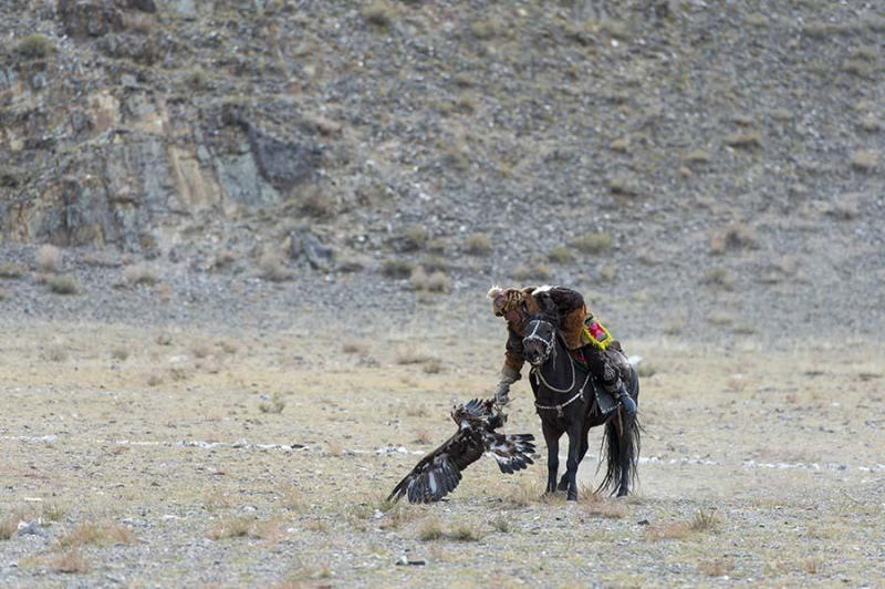 An eagle hunter with an eagle.
