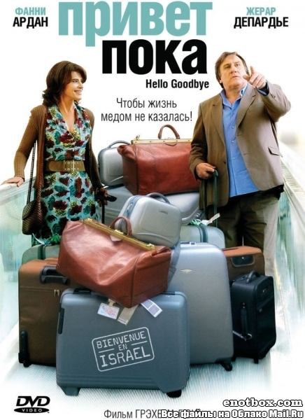 Привет-пока / Hello Goodbye (2008/DVDRip)