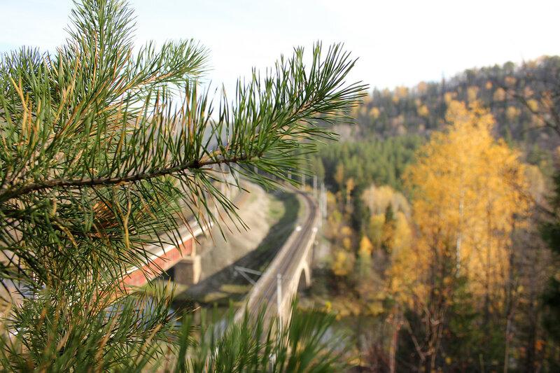 Природа на фоне перегоне Биянка - Симская