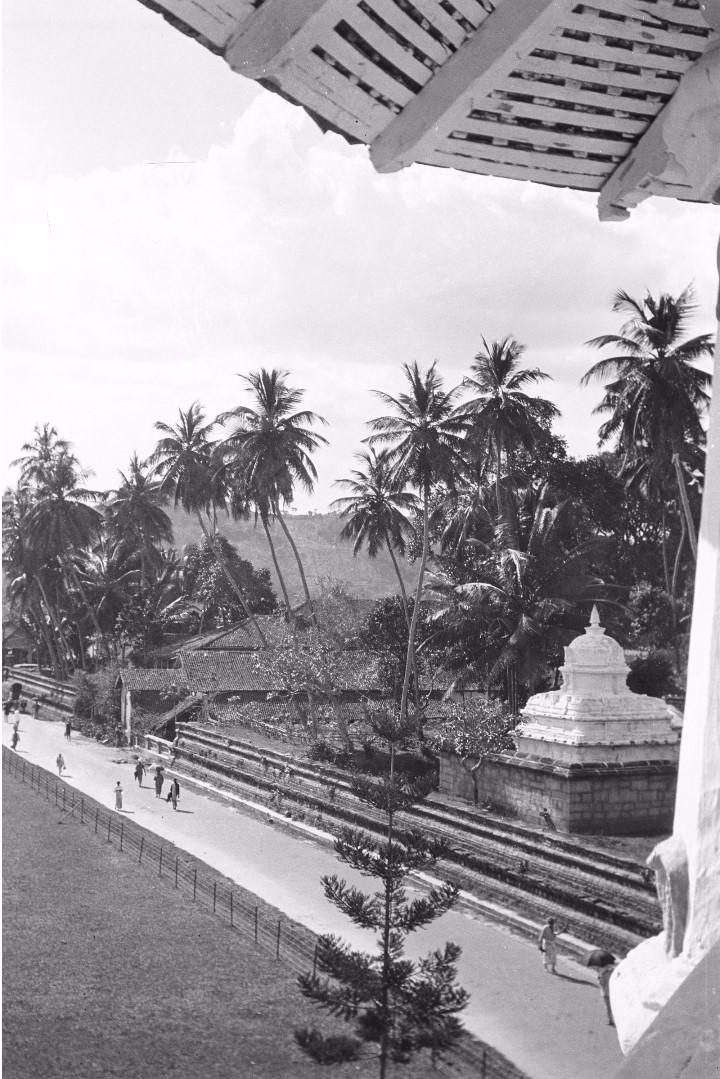 217. Храм Зуба Будды (Шри Далада Малигава) в Канди.  Вид из храмовой библиотеки