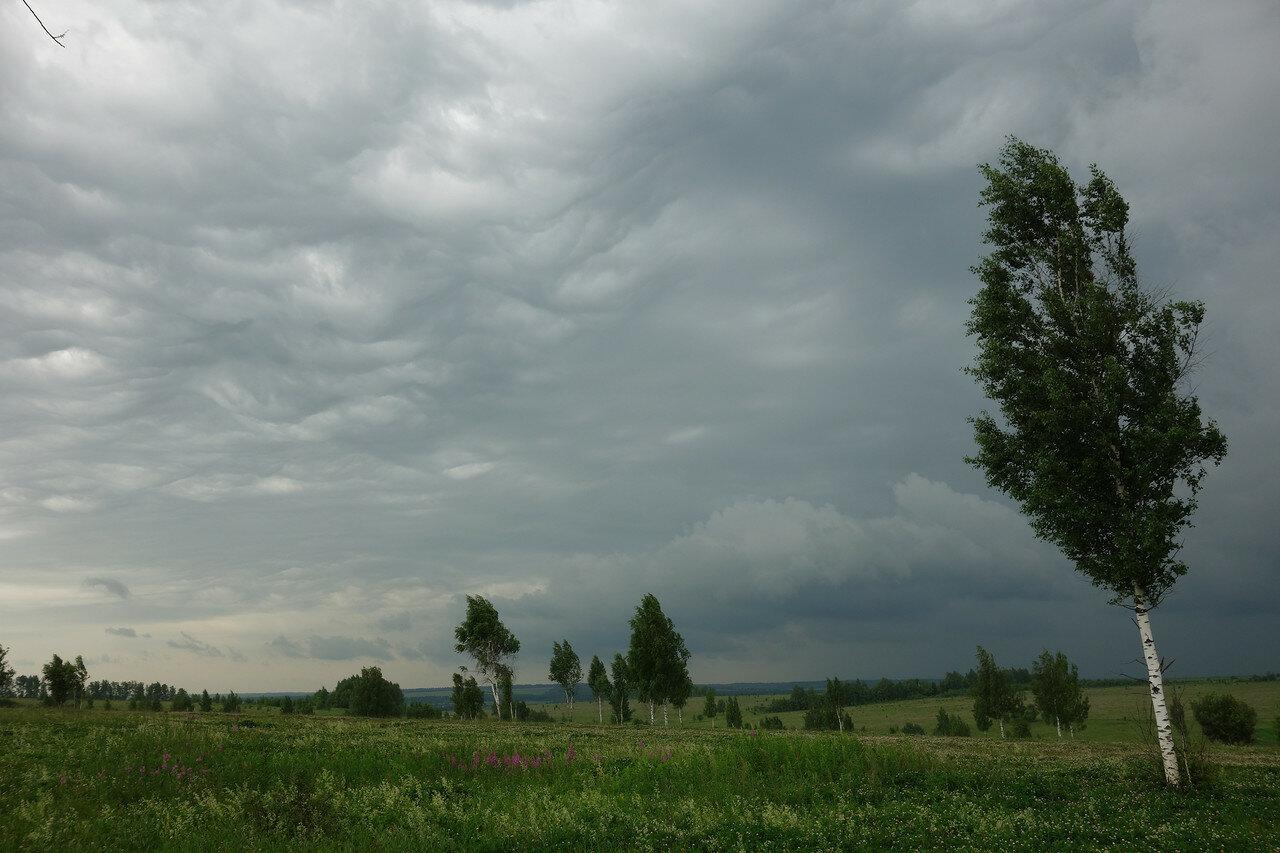 вымеобразные облака!