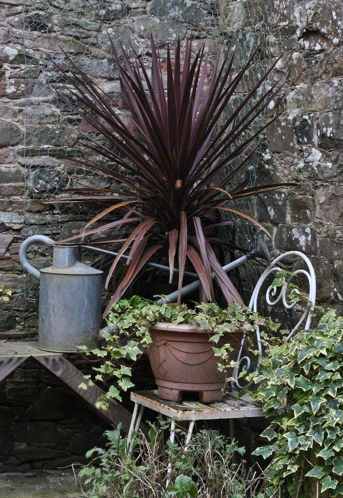gardencorner.jpg