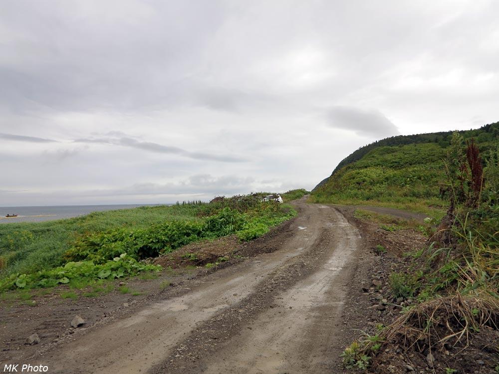 Дорога между Южной заставой и Новиково