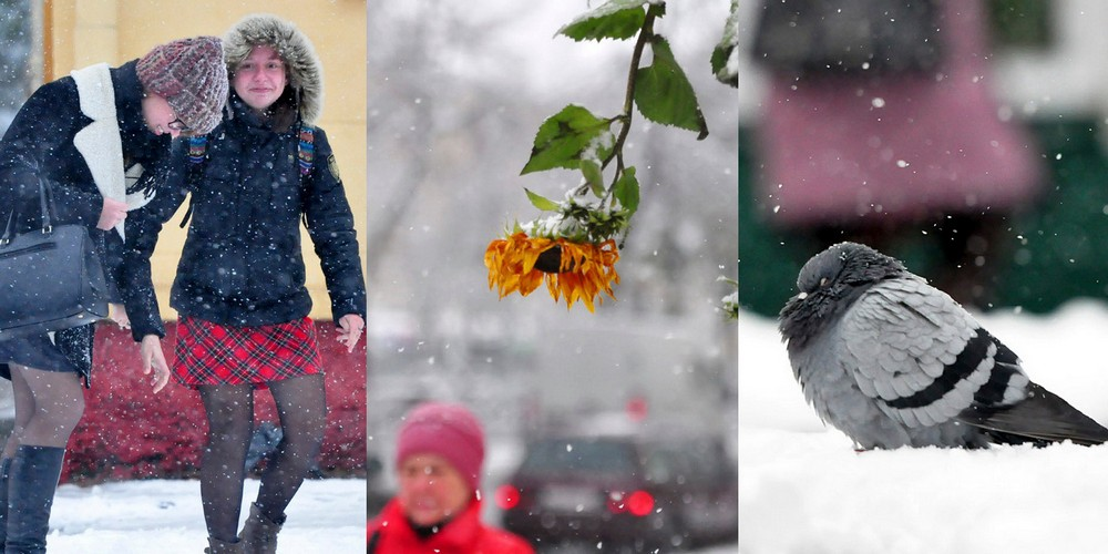 Зима пришла неожиданно: фоторепортаж о снегопаде в Гомеле