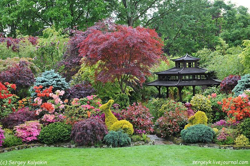 Four Seasons Garden 019.JPG