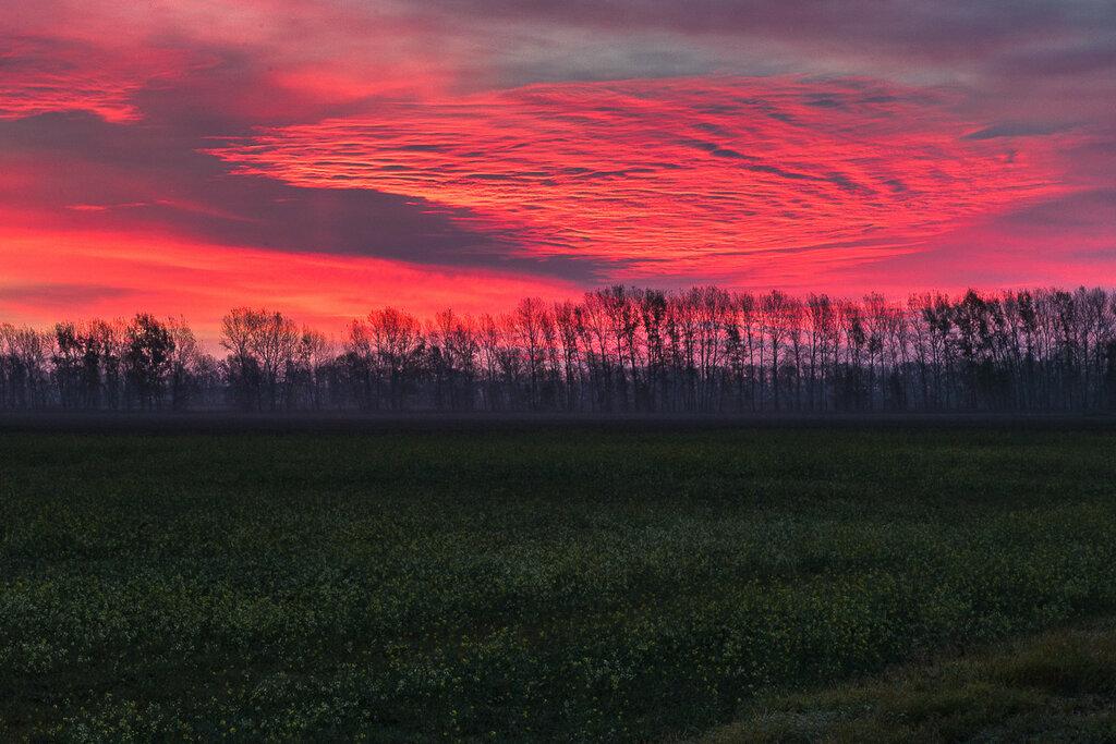 Сентябрьский рассвет. Алтайские поля