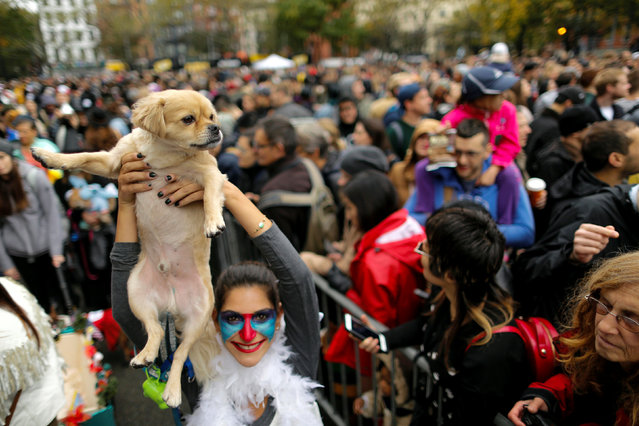 A reveller takes part in the annual halloween dog parade at Manhattan's Tompkins Square Park in
