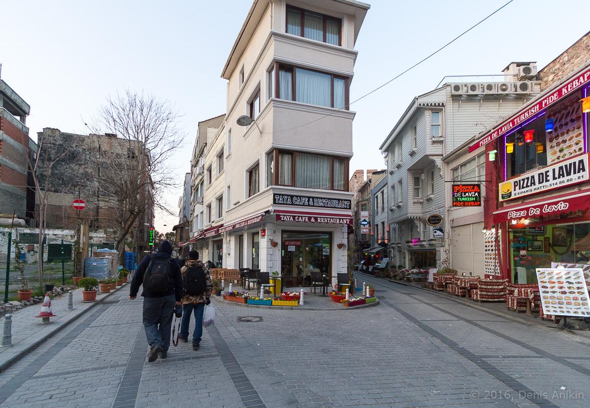 Тюльпаны Стамбул фото 2