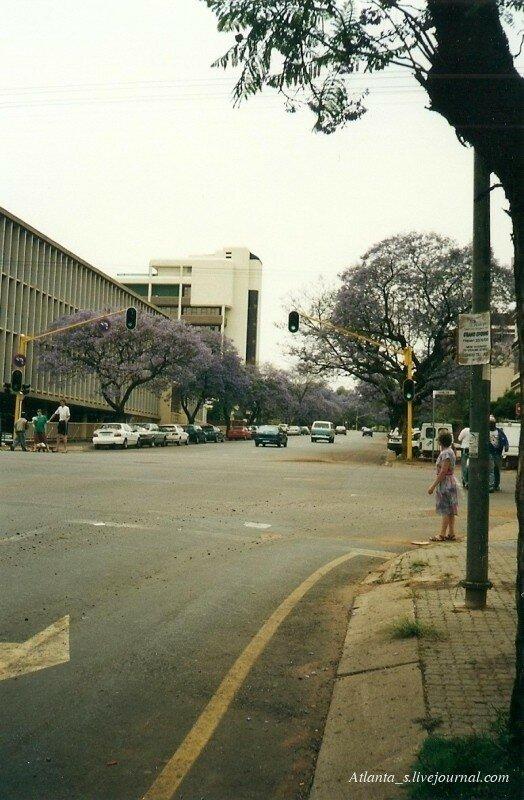 ЮАР (26).jpg