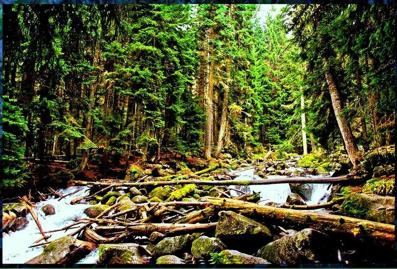 В горах, на реке.jpg
