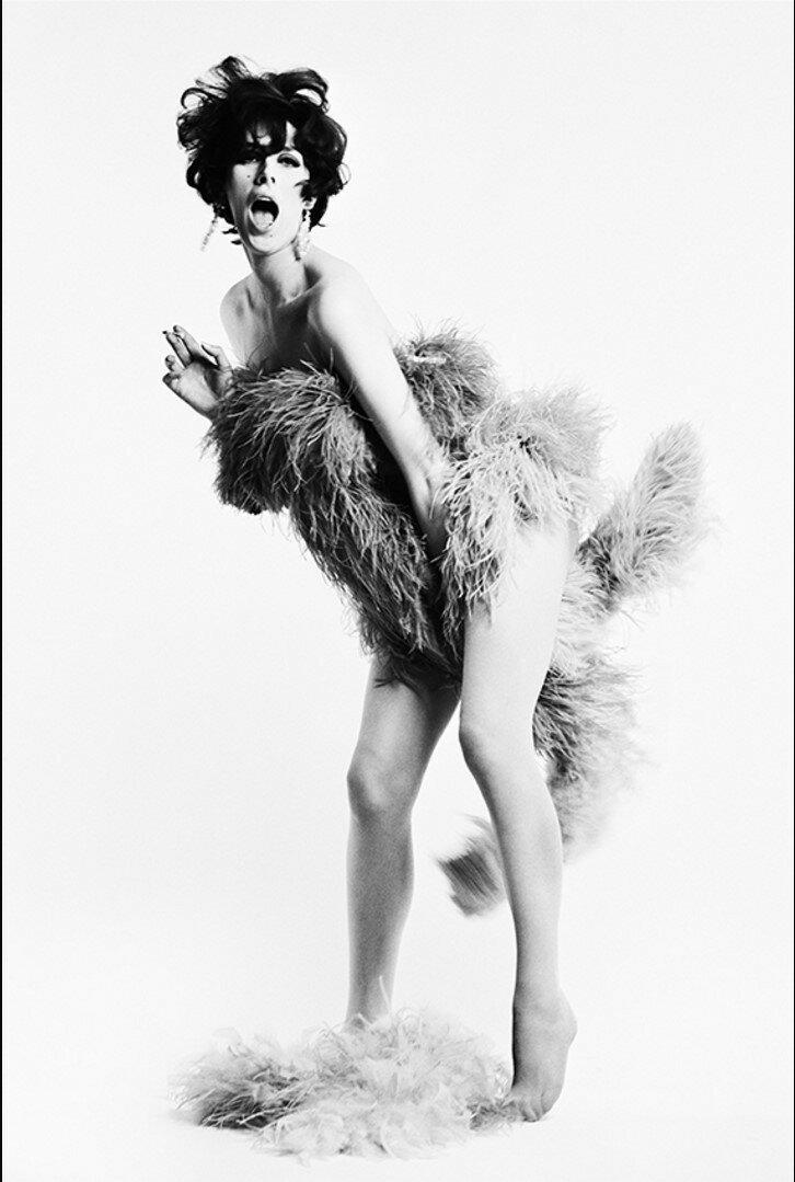 Сью Ллойд (модель)