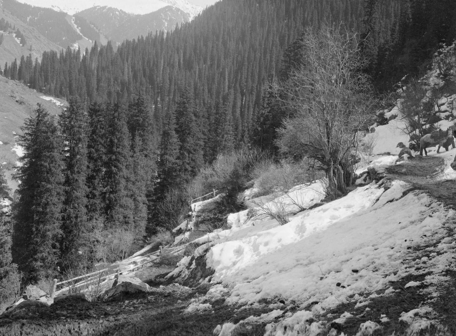 Дорога вверх по склону горы
