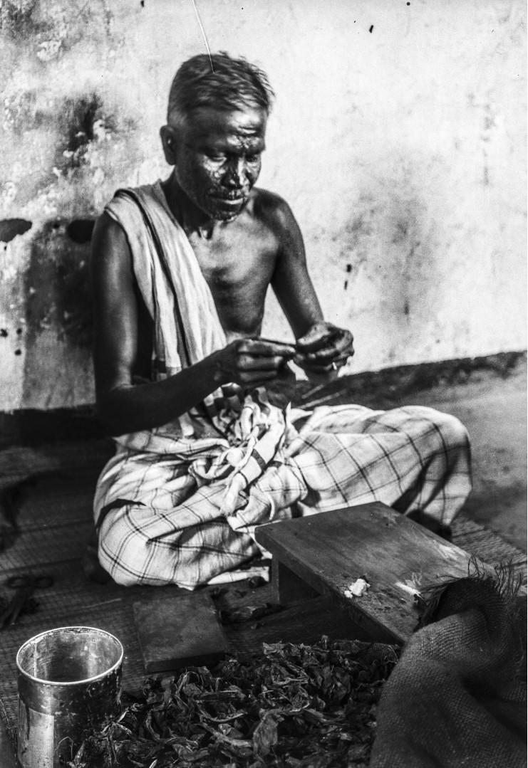 427. Мужчина скручивает сигару