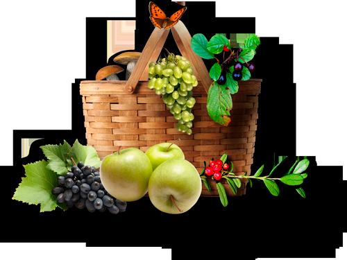 фрукты в корзине