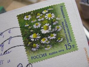 https://img-fotki.yandex.ru/get/196736/27113955.74/0_97799_ece26f5e_M.jpg