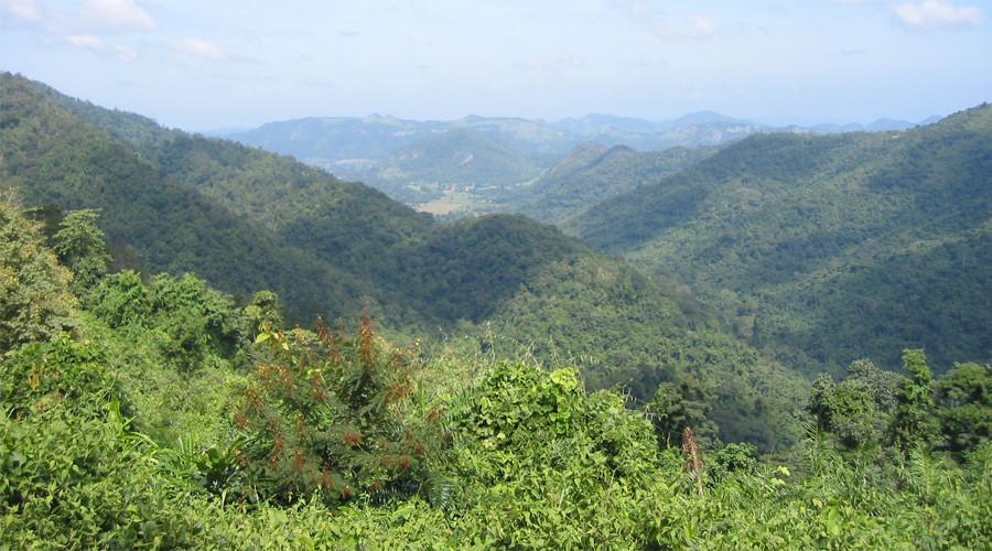 6. Северный лесной массив, Мьянма Благодаря тому, что до многих субтропических лесов на крутых склон