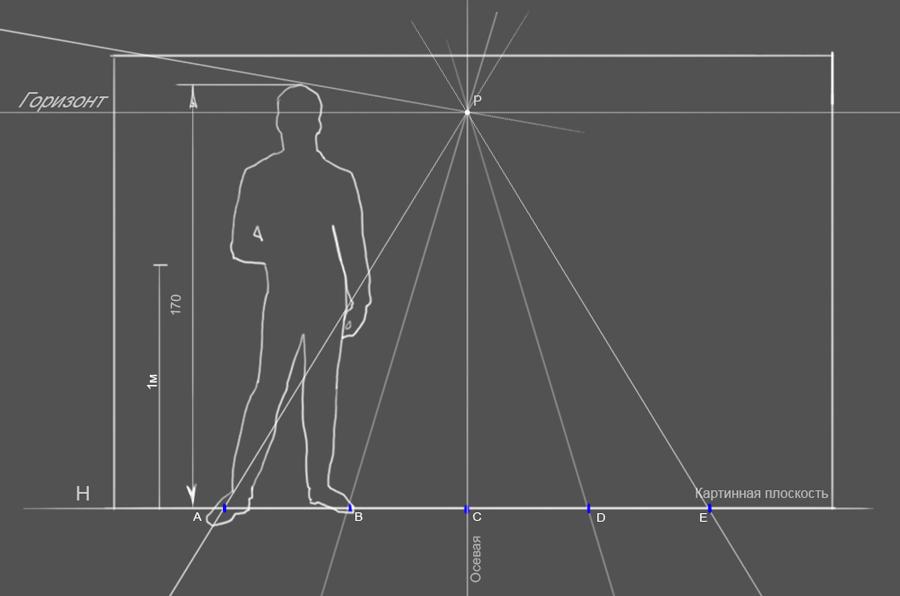 14. Для удобства я разбиваю метровые отрезки по полам и соединяю с точкой P на горизонте, получив та