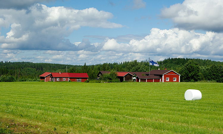 Финская милиция заподозрилаРФ в закупке недвижимости ввоенных целях