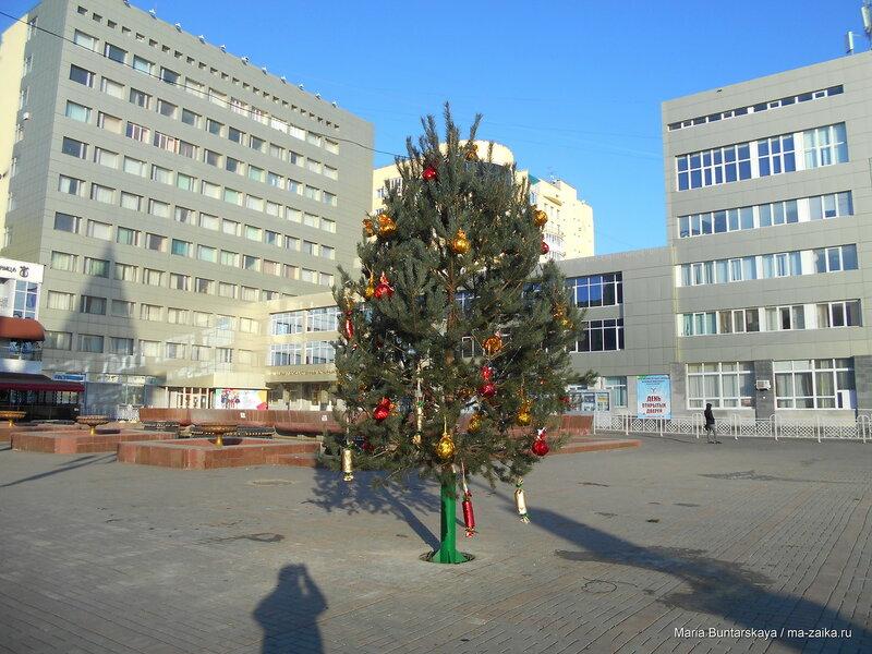 Первый день зимы, Саратов, проспект Кирова, 01 декабря 2016 года