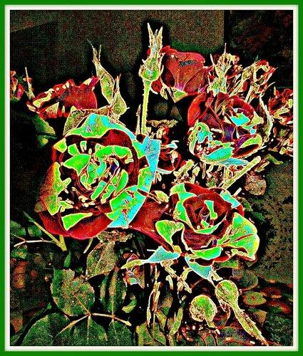 Розы (фото-арт)
