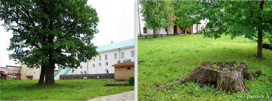 Кириллов3.jpg