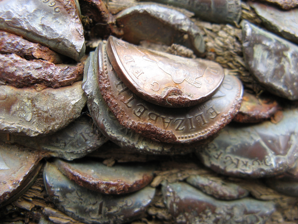 7. Вблизи кажется, что монеты как будто слились с древесиной, но это лишь воздействие климатических